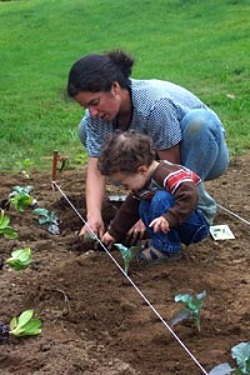 Edible Landscaping   How To: Start An Edible Garden With Your Child