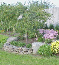 edible landscaping planning your landscaping 101 garden org