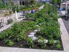 edible landscaping vegetable garden design - Kitchen Garden Design