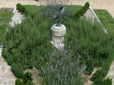 A Formal English Knot Garden Features Standard Herbs Such As Rosemary,  Oregano And Thyme With A Focal Point, Such As A Sculpture, In The Center.