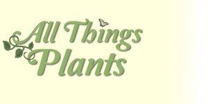 All Things Plants