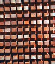 Teak: Queen of Tropical Timbers