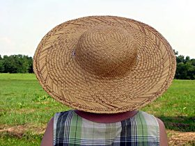 An old-fashioned wide-brimmed straw sunhat will help keep you cool.