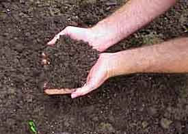 Testing The Soil Is Important For Determining Soil Fertility And Health.  Whether It Be For A Lawn, Flower Garden, Or Vegetable Garden, Knowing Your  PH, ...