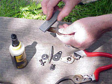 It's easier to sharpen pruners if you take them apart.