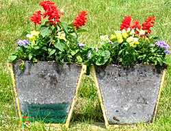 Container gardening continues to be hugely popular and many gardeners love to experiment with large containers mixing and matching edibles flowers
