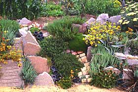 Champagne bottles, artfully combined with other throw-aways and planted with yarrow, aloe, and geum (among others), makes a simple and cheap retaining wall.