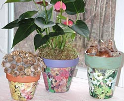 Decorating Clay Pots - Garden.org