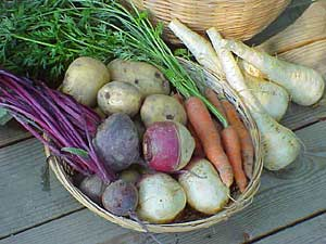 How to store root crops national gardening association
