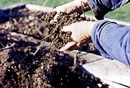 Soil that's loose and open enough to work with your hands is ideal