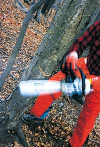Consider appropriate safety gear part of the cost of a chain saw, not accessories, then learn how to use the saw safely.