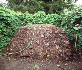 Compost piles need not be fancy or pretty.