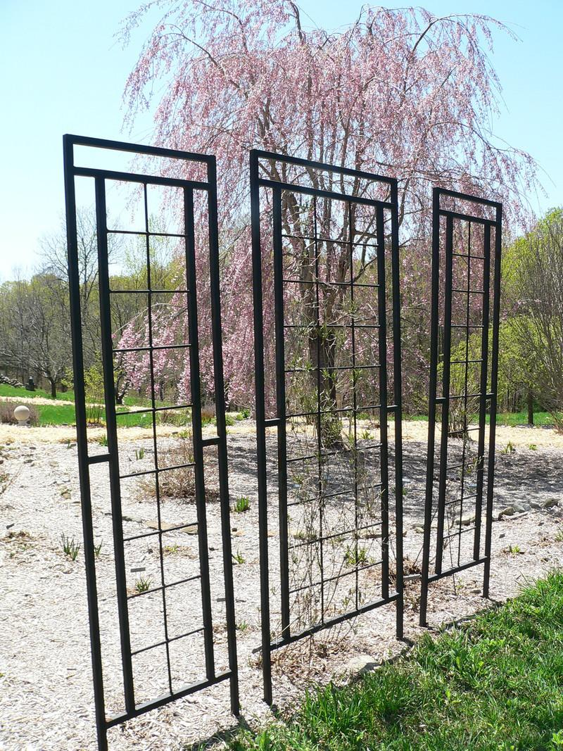 garden structures forum wrought iron trellises. Black Bedroom Furniture Sets. Home Design Ideas