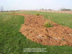 Thumb of 2010-04-02/Ticker/b634e2