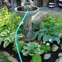 How To Empty the Garden Fountain