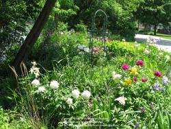 Thumb of 2012-03-01/doglover/09610c