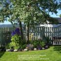 Garden Tours: mcash70