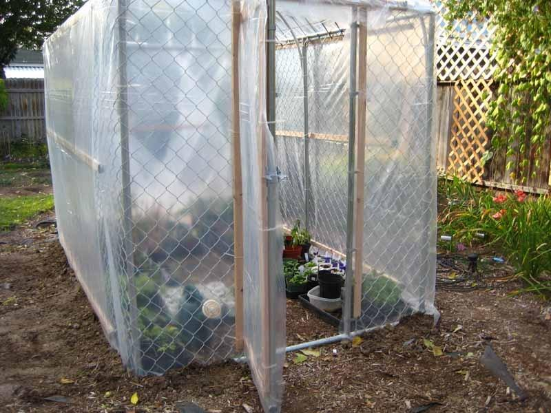 dog kennel greenhouse