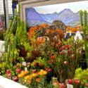 The Chelsea Flower Show 2012 (Part 2)