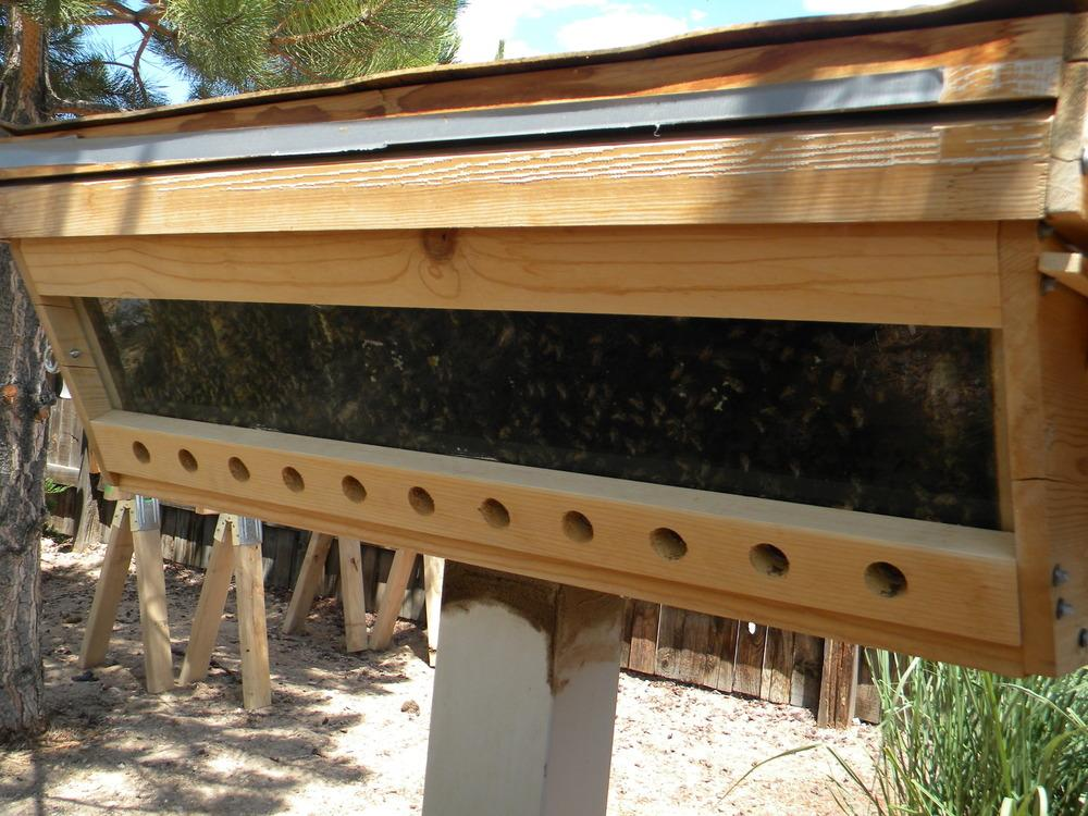 Beekeeping Forum: Building A Top Bar Hive