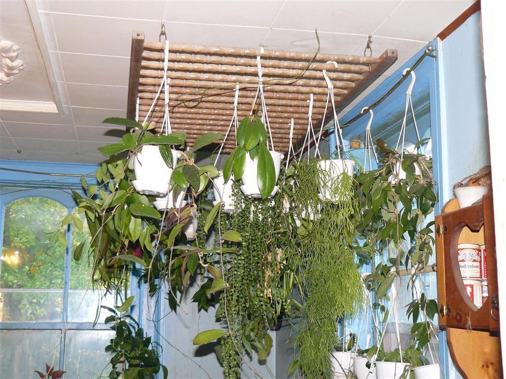 Hanging Plants Recycling Baby Crib Panels Garden Org