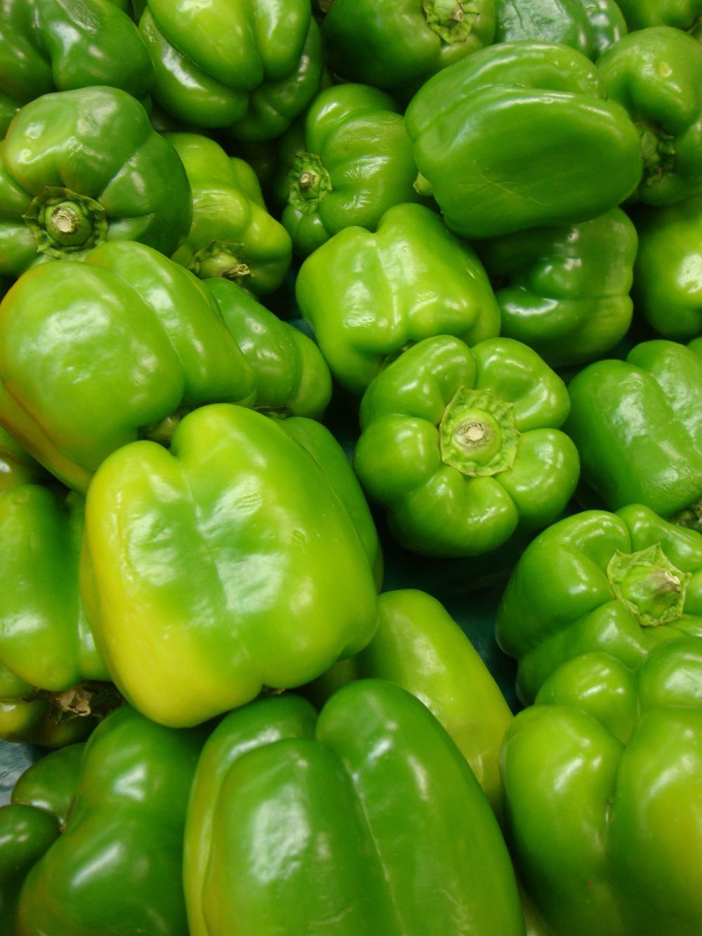 Photo of Bell Pepper (Capsicum annuum 'Yolo Wonder') uploaded by Paul2032