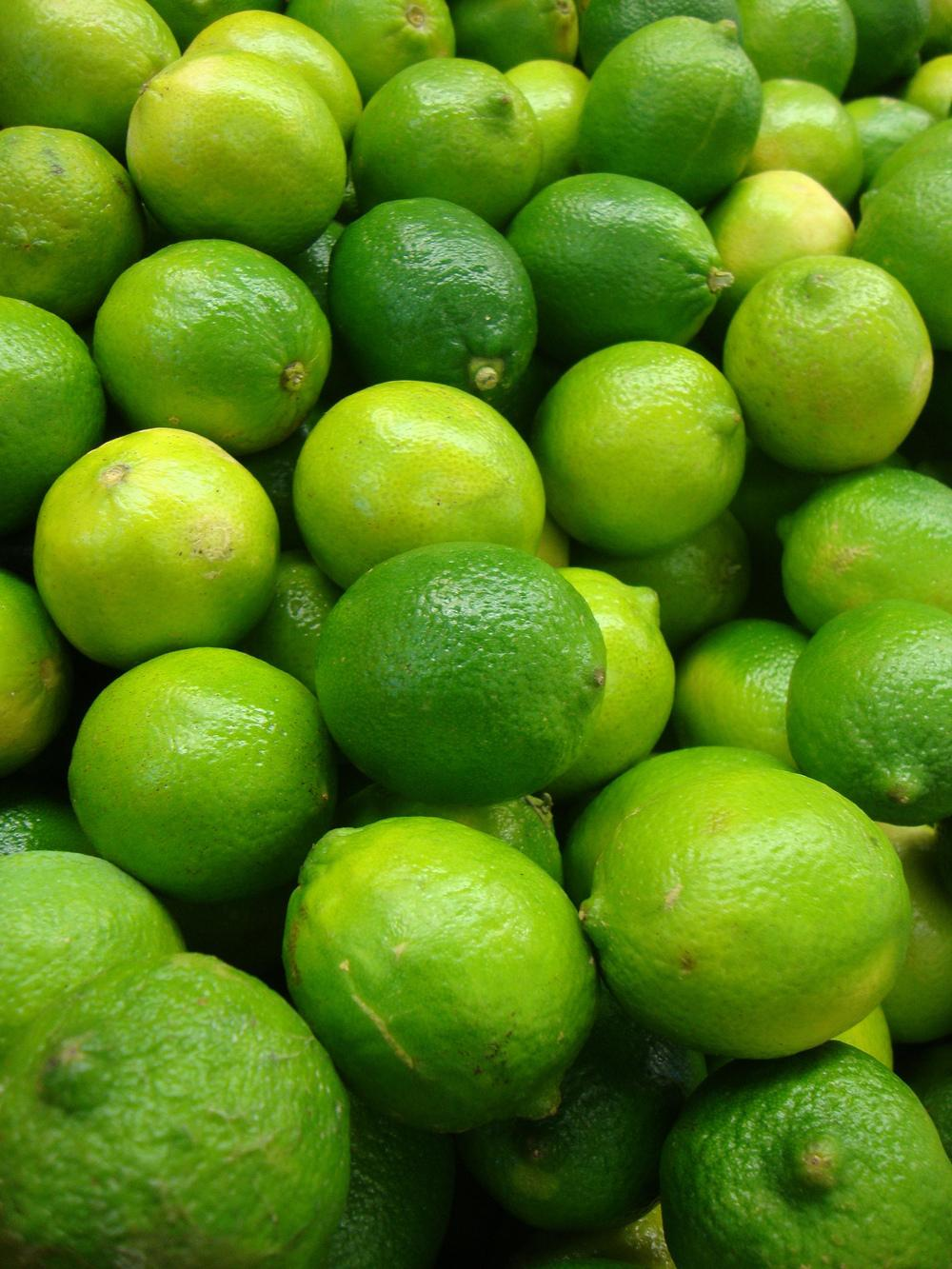 Photo of Lime (Citrus x aurantiifolia 'Persian Lime') uploaded by Paul2032