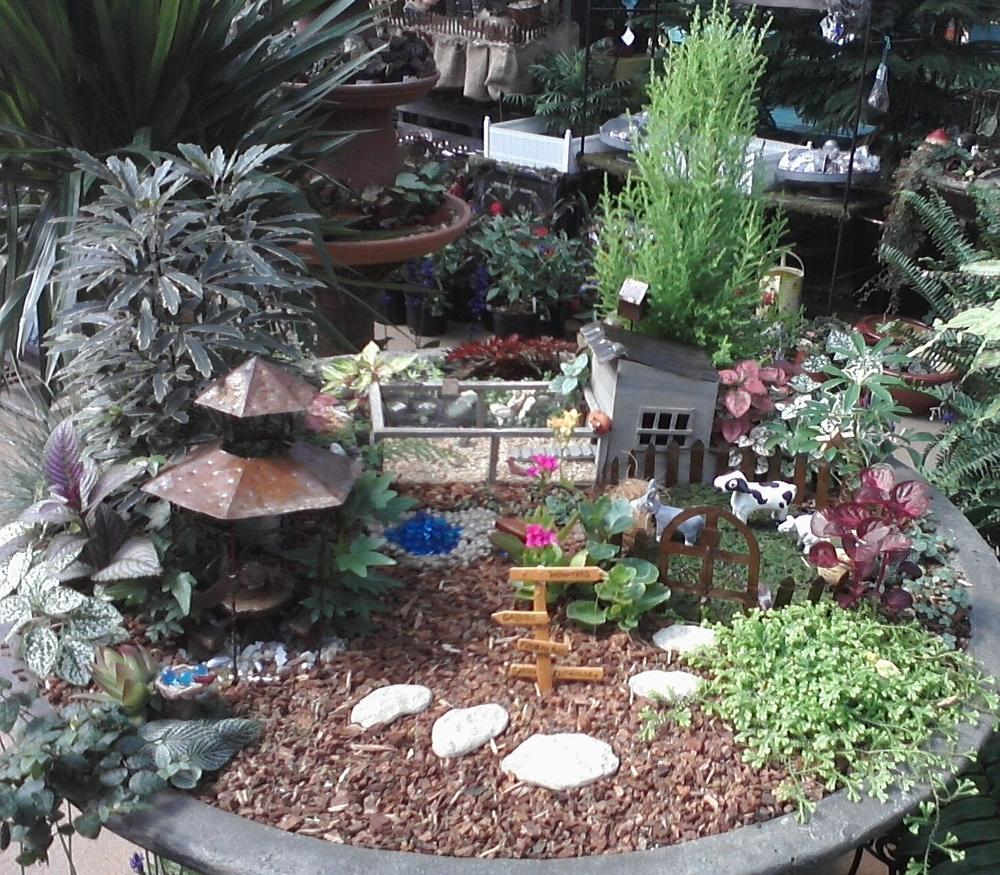miniature gardening forum never been so strongly instantly