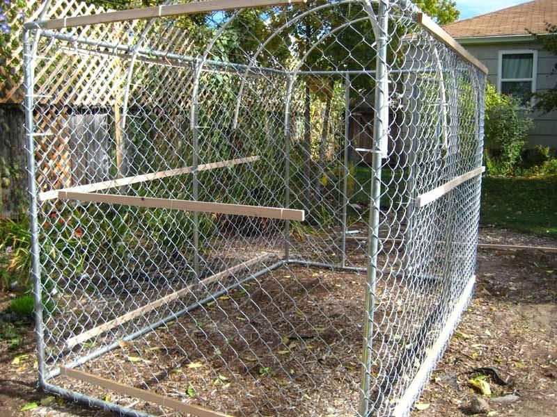 Dog Kennel Greenhouse Of Building A Greenhouse Or Cold Frame Out Of A Dog Kennel