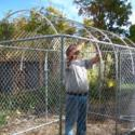 Building a Greenhouse or Cold Frame out of a Dog Kennel