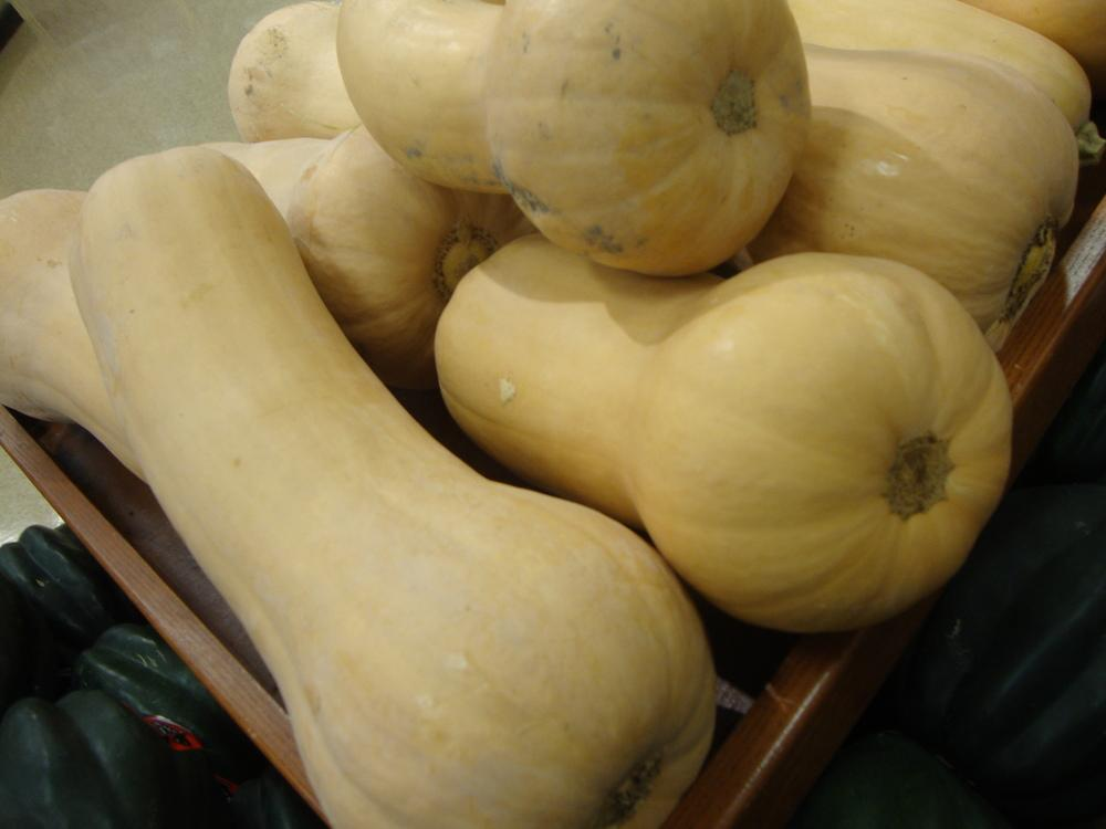 Photo of Butternut Squash (Cucurbita moschata 'Waltham') uploaded by Paul2032