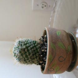 Thumb of 2013-12-09/AR/717e44