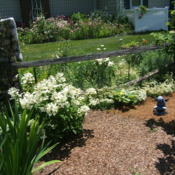 Location: The ParkDate: 2013-07-07Garden setting
