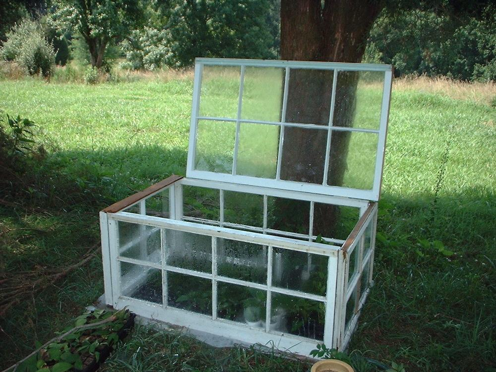 Greenhouses Forum Small Very Small Greenhouse For