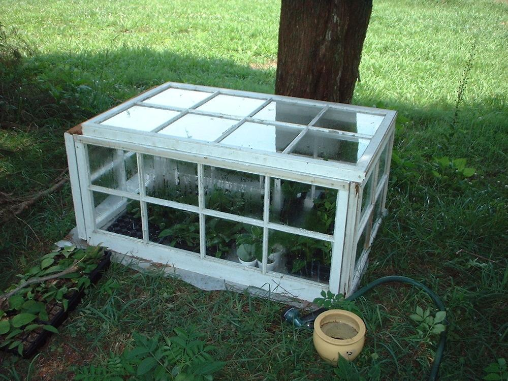 Image gallery small greenhouse for Tiny greenhouse kits