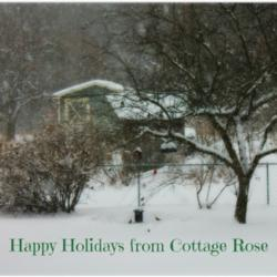 Thumb of 2014-01-04/Cottage_Rose/aa77d4