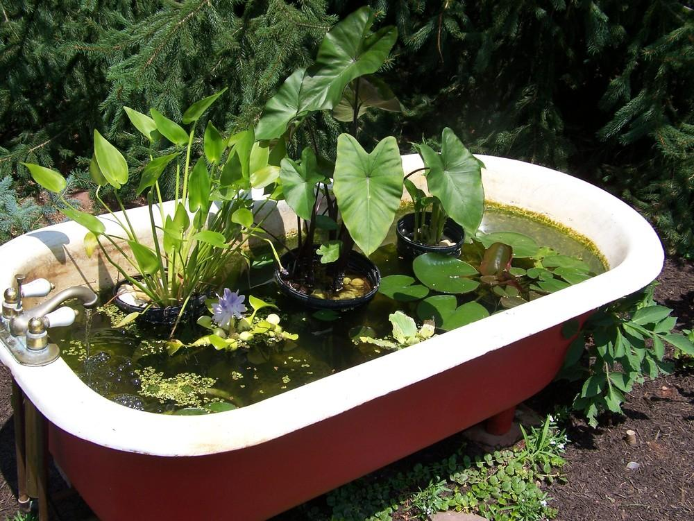 Portable ponds for Portable watering tanks for gardens