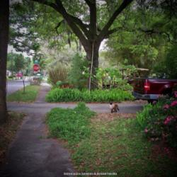 Thumb of 2014-03-25/DavidofDeLand/802b40
