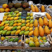 Location: On a local fruit and vegetable market, Rio de Janeiro, BrazilDate: 2014-02-02The ones on the right are the bigger 'Formosa'.