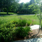 Location: Bluestone Path gardenDate: 2014-0709View from indoor porch.