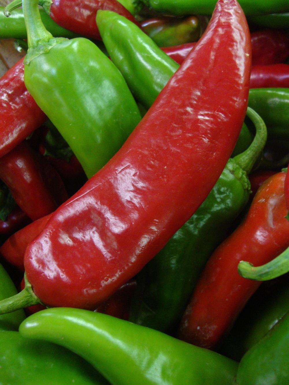 Photo of Hot Pepper (Capsicum annuum 'Anaheim') uploaded by Paul2032