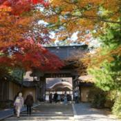 Location: Autumn maple leaves (momiji) at Kongobu-ji on Mount Koya, a UNESCO World Heritage SitePhoto courtesy of: 663highland