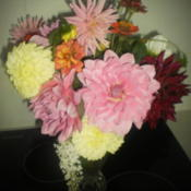 Location: Tenterfield NSW AustraliaDate: 2013-03-05Vase Arrangement .. My Mixed Dahlias.