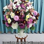 Location: Tenterfield NSW AustraliaDate: Easter 2014Dahlia Arrangement using my Dahlias .. local church