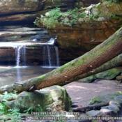 Location: Hocking Hills, OHDate: 2013-07-02