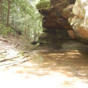 Location: Hocking Hills, OHDate: 2013-06-19