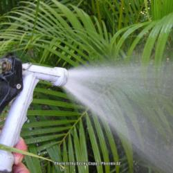 Use a Hose To Spray Off Pests the Organic Way