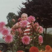 Date: Peace Arch Park Blaina, Washington 1980Ed Albright tending to his flowers named after him
