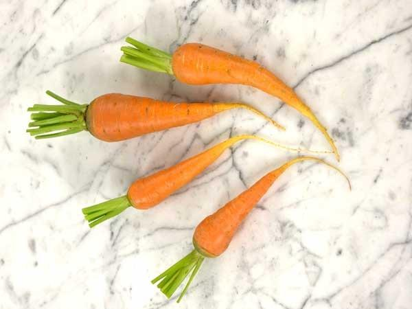 Photo of Carrot (Daucus carota subsp. sativus 'St. Valery') uploaded by Joy