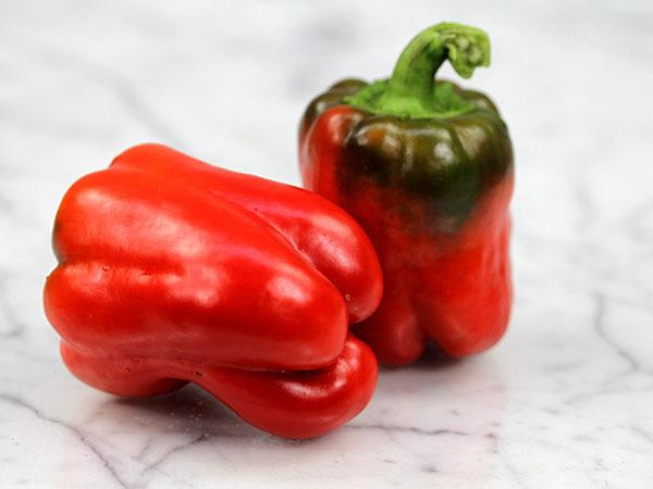 Photo of Bell Pepper (Capsicum annuum 'California Wonder') uploaded by Joy